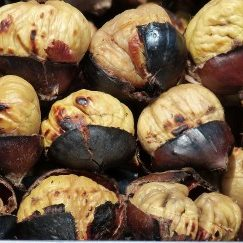 chestnuts-789518_1920